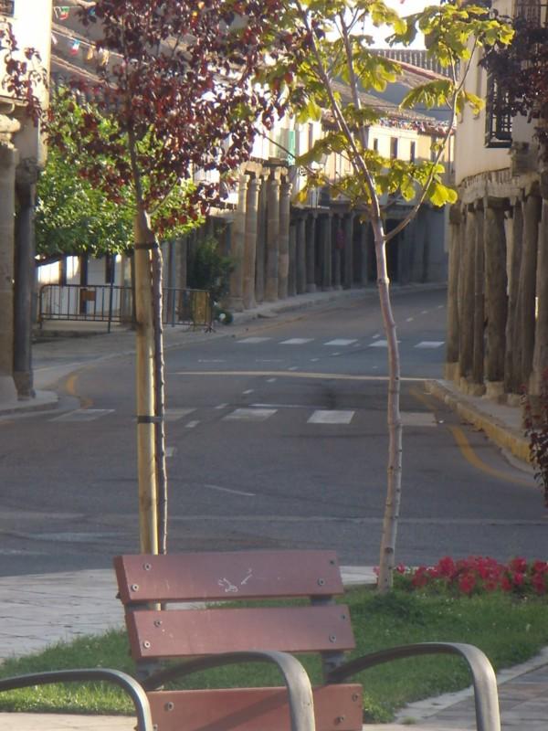 Calles (Rally Fotográfico 2009)
